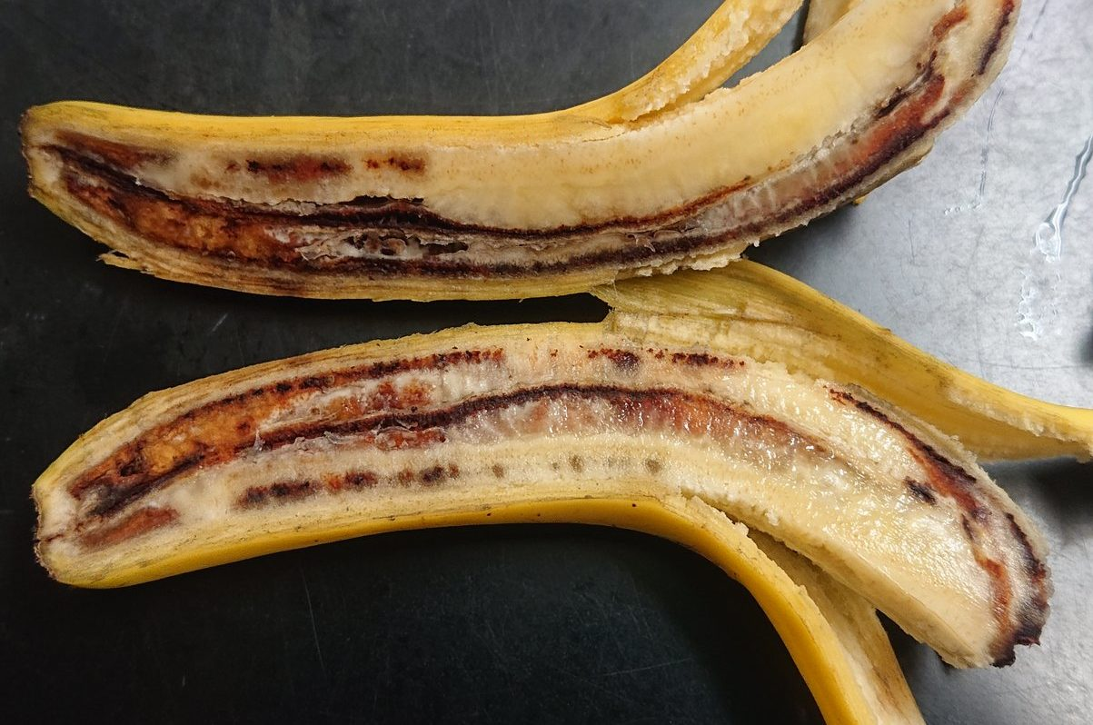 バナナの病気。赤黒くなる。