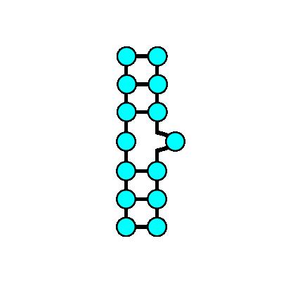 RNA二次構造(バルジ)