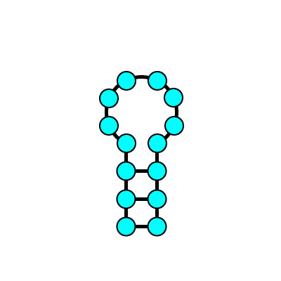 RNA二次構造(ヘアピン)