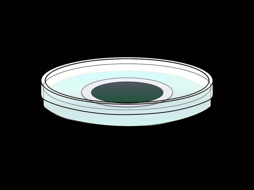 培養中の緑のカビのフリーイラスト画像1