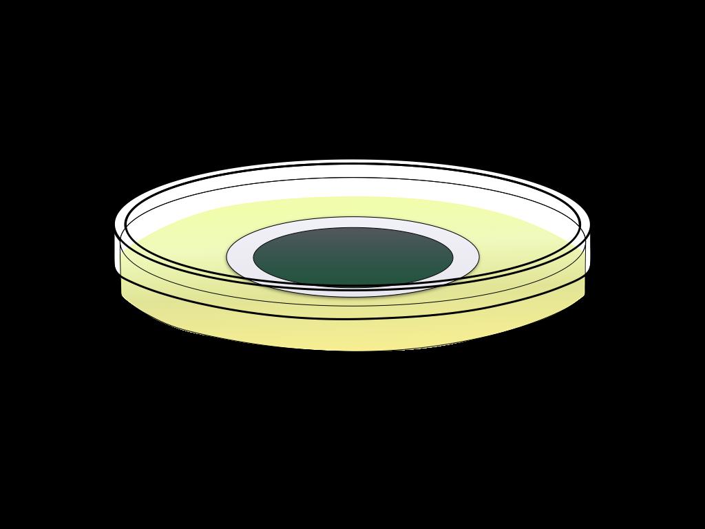 培養中の緑のカビのフリーイラスト画像2