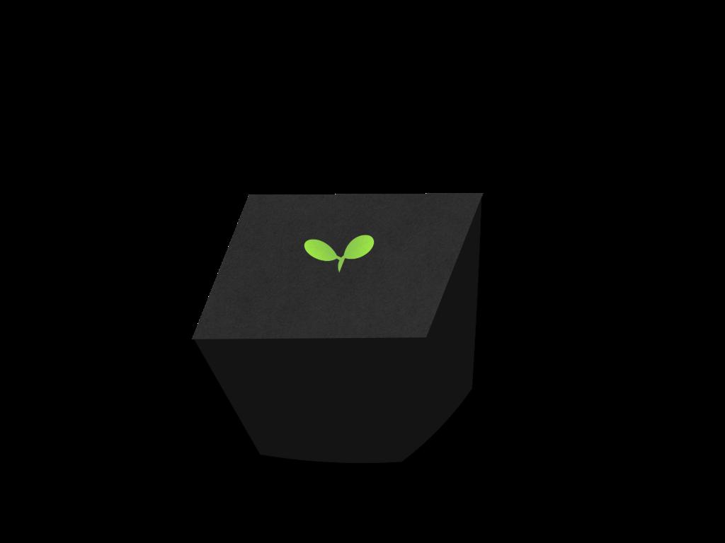 発芽のフリーイラスト画像
